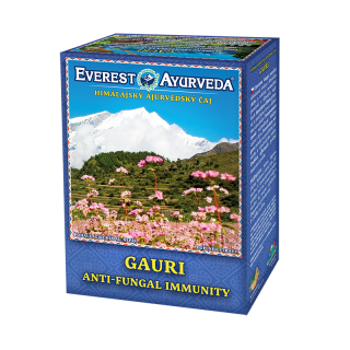 Čaj Gauri EVEREST AYURVEDA